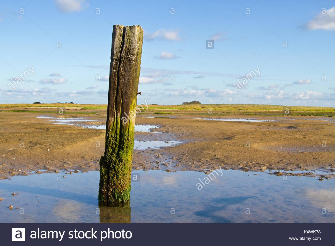Macron : un poteau de boue.
