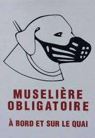 Le Port du Masque obligatoire, marque de la bête.